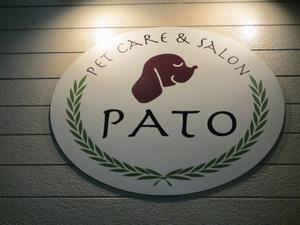 Pato_1024x768
